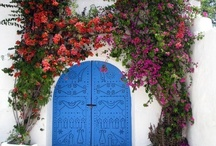 Make an Entrance! / Doors and everything else that makes them special.