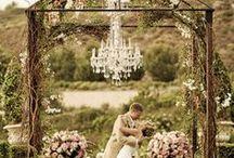 Wedding / by Abby Dieter