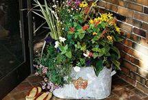 Pretty Planters. / by Abby Dieter