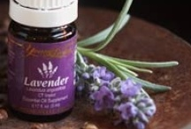 Health/Natural Remedies / by Helene Cohen