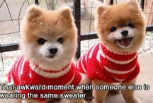 That Awkward Moment... / by Time Timer LLC