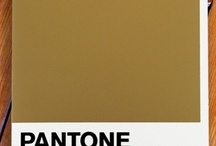 PANTONE gold / by Corinne Smith