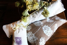 Holistic & Other Natural Goodies / by Bre Chambers
