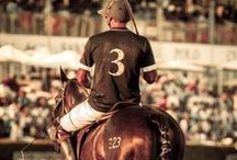 Equine / Polo & more. / by Jesse Dzombak