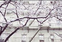 Winter Wonderland / by Jordana - White Cabana