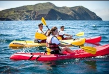 Scouting Outdoors / The outdoors is a natural environment for a Scout. Here you'll find tips for camping, paddling, climbing, and more. / by Scouting magazine