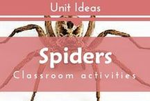 Unit: Spiders Arachnids for Preschool, Kindergarten, Montessori