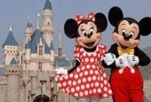 Vacation / We will be in the States for a few weeks in 2013 and Disney World is on our list. I wonder who will have more fun, me or the kids?