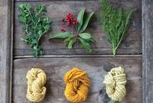 Fiber Arts / I pin all things related to natural dyes, Eco printing, weaving, spinning yarn, embroidery, sewing, etc.