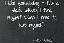 Gardens at Rabbit Ridge / by Suzanne Lawson