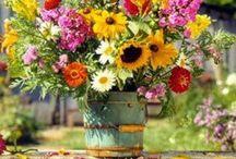 RUSTIC BLOOMS / Rustic floral arrangements