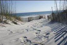 Sugary White Sand Beaches of Gulf Shores / Life's a beautiful beach when you visit family-friendly Gulf Shores, Alabama. Check out this hidden gem and all it has to offer.