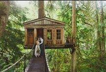 Shelley's wedding