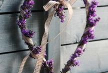 lavanda - lavender