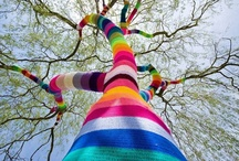 Art Installations / by Susi Reed
