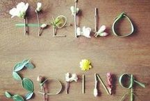Spring Fever! / by Me-Lanie Mattox