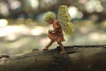 We believe / Fairy Gardens