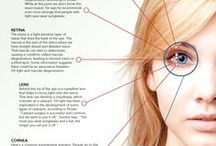 Eye Facts & Infographics