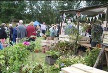 Plant Fair 2013