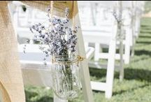 Lavender for Weddings