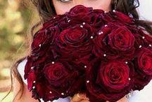 Wedding Ideas / by Amy Myrick