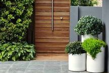 Garden ideas / Get green with these garden ideas for around your home, inside and out.