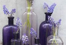 Colour at home: Purple