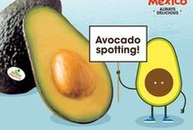 All About Avocados! / From selecting the perfect avocado from Mexico to slicing and pitting to other kitchen tricks, we've got you covered! / by Avocados From Mexico