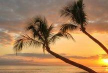 Florida / Images of Florida.