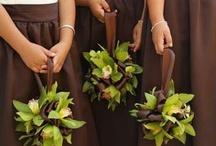 Wedding Ideas / by Cheryl Baker