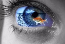 Eye Just Like It! / The decorations & digital dramatizations to the windows of our souls. / by Carla Perez