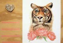 ellaquaint illustrations