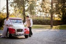 Gauteng Wedding Venues / Sharing some of our gorgeous wedding venues in Gauteng