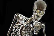 Blog Posts / Blog posts from Skeleton Keys and other sites
