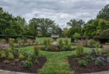 Public Gardens / Celebrating great gardens to visit and the lessons they teach us. / by Horticulture Magazine