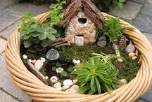 Miniature Gardening & Terrariums / Fairy gardens and other small-small-scale projects for outdoors and in. / by Horticulture Magazine