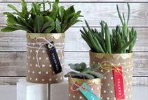 DIY / DIY crafts and home décor / by Amanda Coleman Designs