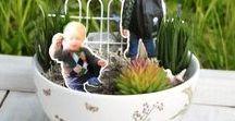 mini gardens | Miniaturgärten / how to create your very own fairy garden DIY  wie man seinen eigenen Mini Garten selbermachen kann  oder auch Feengarten