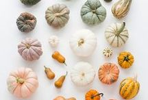 Decorating for Autumn / ❖ decor and interior design ideas for the season of autumn ❖