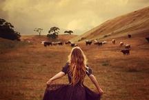 Farm Dreams / by Jessica McFarland