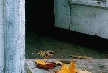 Autumn / Crisp air, apples, colorful leaves, boots, hearty soups, warm sweaters, pumpkins
