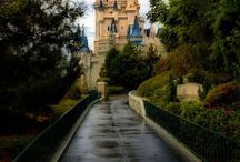 Everything Disney / Season ticket holders love going with my family as much as we can  / by Trini Chavez