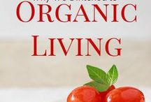 Organic & Green Living / All about green living and organic living. This board will include articles on organic, gluten-free, dairy-free (etc.) foods, the chemical free home, and anything associated with leaving less of a footprint.