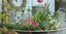 * Outdoor / Garden *