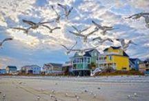Garden City Beach / Garden City Beach, Myrtle Beach, Vacation Rental Homes, Beach Photography, Myrtle Beach Area Info, Garden City Realty, Beach Sunset, Beach Sunrise, Garden City Realty