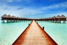 Maldive 2015 / by Lucky Charms