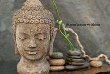 Buddha / by Rachel Guillotte