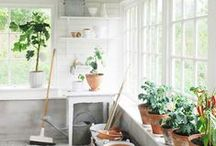 Garden / by Heather Bullard