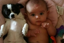 Babies / by Clarissa Perrot