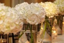 Wedding / by Kathryn Murphy